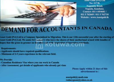 Accountant1597813090