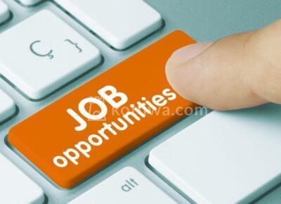 jobsmagcover1597733135