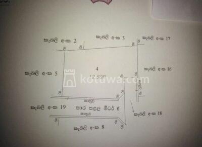 plan1597932402