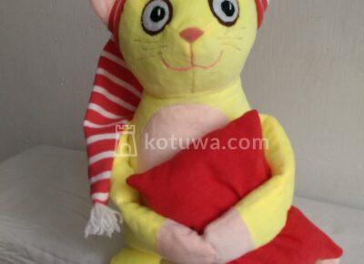 CatwithPillow1609985250